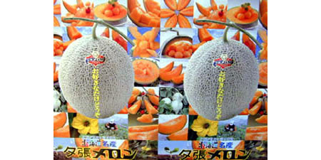 melon1 Japans Cadillac of melons Yubari melons fetches record 2 million yen