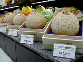 yubari1 Japans Cadillac of melons Yubari melons fetches record 2 million yen